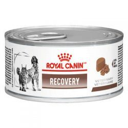 Alimento Úmido Royal Canin Lata Cães e Gatos Veterinary Diet Recovery Wet 195g